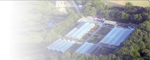 Aerial view of Albion Plants